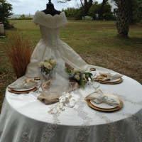 Let Us Dress Your Table!
