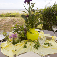 Vinyl Table Linen with Overlay